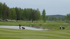 Aerial view Golf course. Golfers walking the fairway on a course with golf bag and trolley stock video