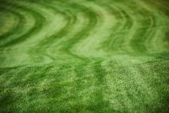 Aerial view of a golf course. Aerial view of a green golf course Royalty Free Stock Image