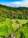 Aerial View of Grass Field stock images