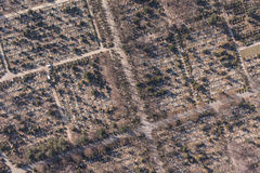 Aerial view of  graveyard Stock Photography