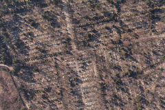 Aerial view of  graveyard Royalty Free Stock Photos