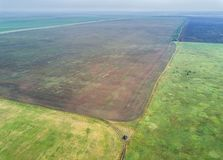 Aerial view of the green cultivated fields royalty free stock images