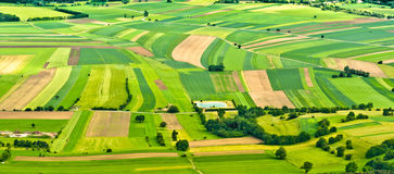 Aerial view of green fields stock photos