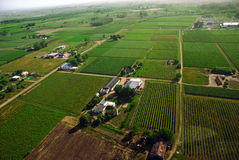 Aerial view of green fields Royalty Free Stock Photo