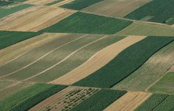 Aerial view of green fields Royalty Free Stock Photography