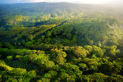 Aerial view of green fields on Kauai, Hawaii Royalty Free Stock Photo