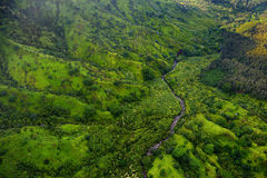 Aerial view of green fields on Kauai, Hawaii Stock Photography