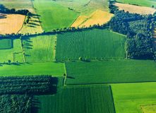 Aerial view of green fields Stock Images