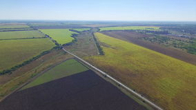 Aerial view of green fields stock video