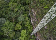 Aerial view of a green forest royalty free stock image