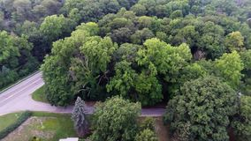 Aerial view of green forest treetops from above in air plane flight. Residential houses in dense forest from above overhead aerial view stock video