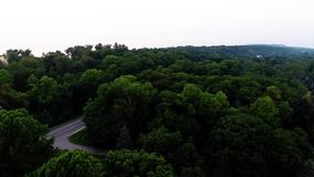 Aerial view of green forest treetops from above in air plane flight. Forest top view aerial trees and branches stock video