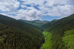 Free Aerial View Green Grass Summer Mountain In Mountains. View Of Carpathians Mountains In Drone Aerial View Stock Photos - 156787633