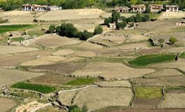 Aerial view of green ladakh agricultural  landscape Royalty Free Stock Photos