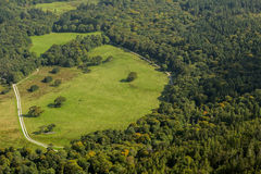 Aerial view of green meadow. Aerial view of oval shaped green forest meadow Stock Photo