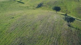 Aerial View Green Rural Landscape stock video footage