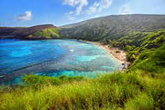 Aerial view of Hanauma Bay, Oahu, Hawaii Royalty Free Stock Images