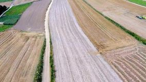 Aerial view of harvest field landscape at summert in Poland. stock video
