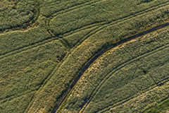 Aerial view of the harvest fields  morning landscape Stock Photo