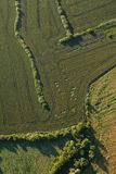 Aerial view of the harvest fields  morning landscape Stock Images