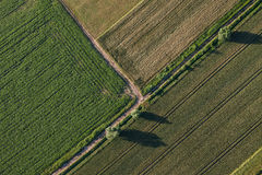 Aerial view of the harvest fields  morning landscape Royalty Free Stock Photography
