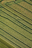 Aerial view of the harvest fields  morning landscape Stock Photos