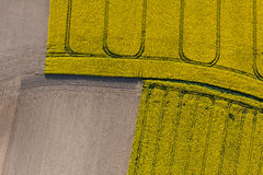 Aerial view of harvest fields Royalty Free Stock Photos