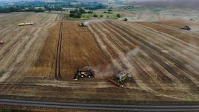 Aerial view of a harvester machine. Side view of combine work in field stock video footage