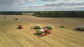 Aerial view harvesters gather wheat and pour into trucks. Tyumen/Russia - August 31 2018: Wonderful aerial view green and white harvesters gather wheat and pour stock footage