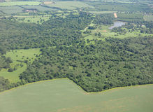 Aerial view of Hatfield forest. Essex, England, UK Stock Photography
