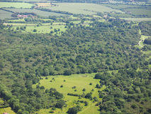 Aerial view of Hatfield forest. Essex, England, UK Royalty Free Stock Photography