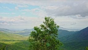 Aerial View of Highland Valley with Tree on Foreground stock video footage