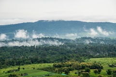 Aerial view of hills in rural covered with fog in the morning Royalty Free Stock Images