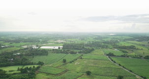 Aerial view of the housing with the typical rice farming or agriculture in rural Thailand stock video footage