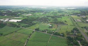 Aerial view of the housing with the typical rice farming or agriculture in rural Thailand stock footage