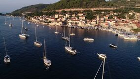Aerial view of hundreds of sailboats and yachts embarked in marina