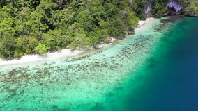 Aerial View of Island Coastline in Raja Ampat. Seen from the air, calm seas wash against the coastline of a limestone island in Raja Ampat, Indonesia. This stock footage
