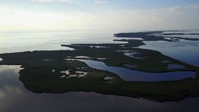 Aerial View of Islands and Mangroves in Caribbean. Aerial view of mangrove islands and the calm lagoon inside Turneffe Atoll in Belize. The area supports a wide stock video
