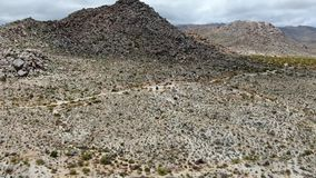 Aerial view of Joshua Tree National Park stock video
