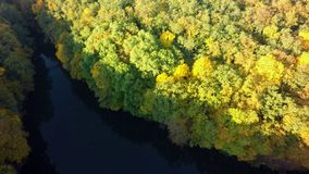 Aerial view on the lake and autumn tree forest.  stock photo