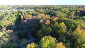 Aerial View Lake and Fall Colors.  stock footage