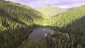 Aerial view of Lake Synevir in Carpathian Mountains in Ukraine stock footage
