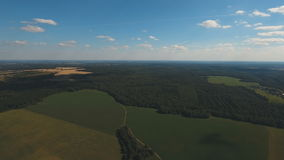 Aerial View.Landscape of the forest, field, sky. Aerial View. Flying over the forest and green fields.Panorama of sky clouds and grass on meadow.Image of crops stock video