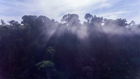 Aerial view of morning fog Royalty Free Stock Photography