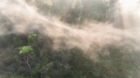 Aerial view of morning fog Stock Photography