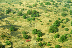 Aerial view of landscape in South Sudan. Green and yellow pasture with single trees and a single house Stock Image