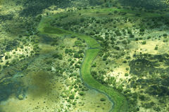 Aerial view of landscape in South Sudan. A lush green river bed seen from above Stock Photos
