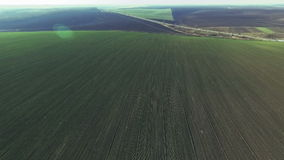 Aerial view of the large green field stock footage