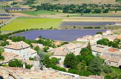 Aerial view of lavender field in France Stock Images