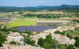 Aerial view of lavender fields Royalty Free Stock Photos